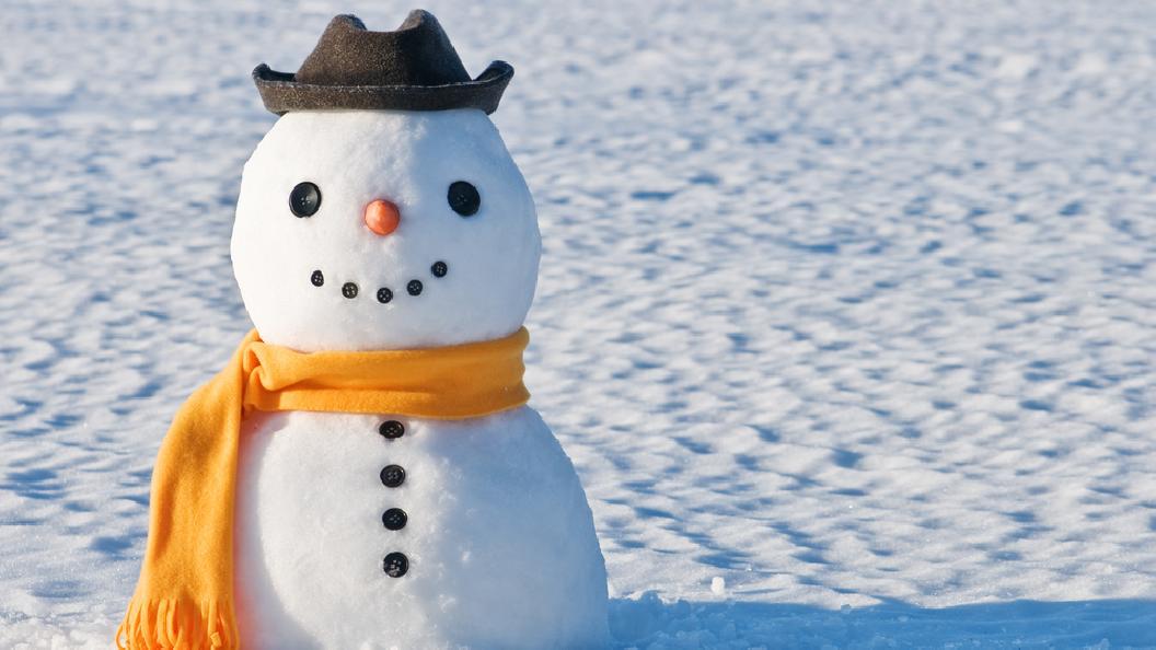 Wir feiern den Schneemann