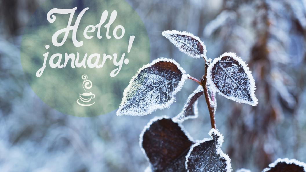 Momente im Januar